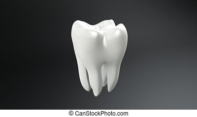tooth white and black background - The health of white tooth...