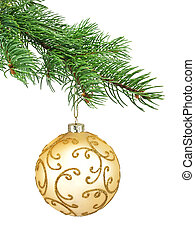 Branch of Christmas tree on white background