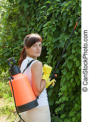 Woman spraying branches - Woman spraying tree branches in...
