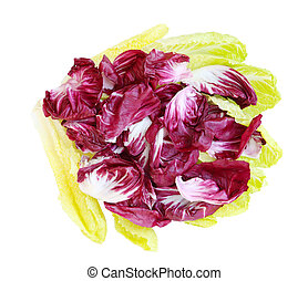 Radicchio and Romance Lettuce isolated on white