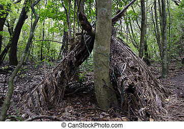 Wilderness Survival - Debris Huts - A survival hut in the...