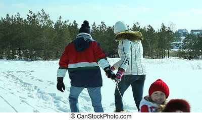 Winter day walk - Parents pulling children on sled along the...