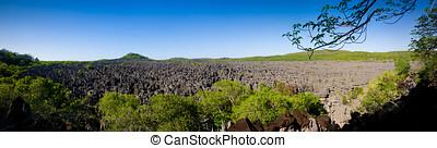 Tsingy of Ankarana - The Sea of Tsingy, Ankarana National...
