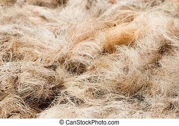 Pile of processed copra fibre get dried before next stage of...
