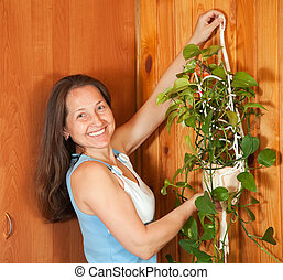 woman hanging flower on wall - Mature woman hanging flower...