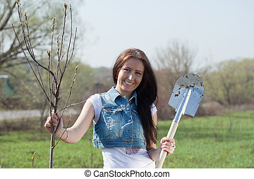 Female gardener planting tree - Female gardener planting...