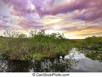 Sunset On A Tropical River - Colorful Sunset On A Tropical...