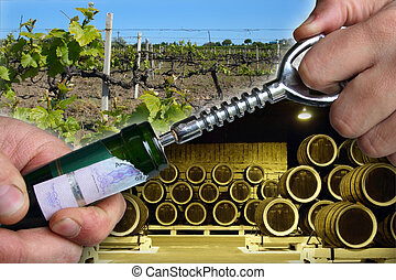 open wine bottle - man hands open wine bottle with corkscrew...