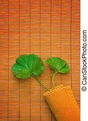 Plant over a bamboo matt