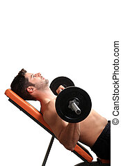 body builder workout isolated on a white background