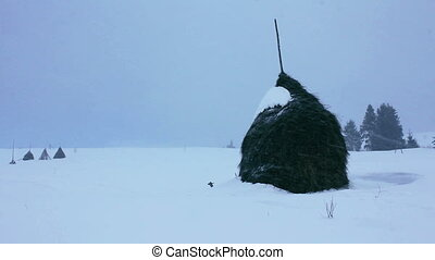 Haystacks in winter at Carpathians, Ukraine
