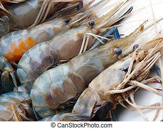 delicioso, fresco, camarón, mariscos