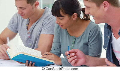 Happy students seriously doing their homework in a bright...