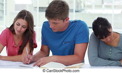 Peaceful students working on their homework
