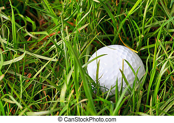 Golf ball in the rough - Photo of a golf ball lying in the...