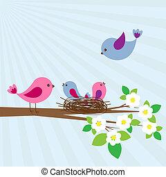 Family of birds in spring day