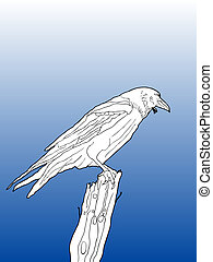 line drawing of a crow