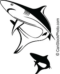 shark - Vector illustration black shark and silhouette