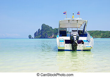 speed boat in sea - speed boat in tropical sea