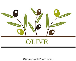 Olives label - Olive branch label. Vector illustration