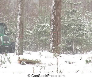 tractor tree branch snow - tractor carry trailer loaded with...