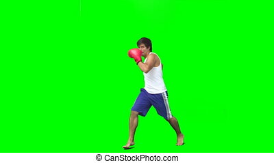 Boxer performing an air kick against a green background