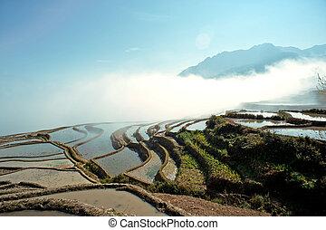 China Yunnan, Yuanyang terraced color