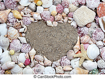 Sea shells in the shape of a heart - Sea shells making a...