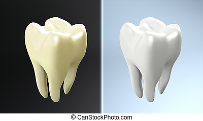 tooth compare - The health of tooth and bad tooth comparison...