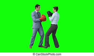 Colleagues boxing in slow motion