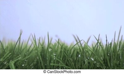Water falling in super slow motion on the grass