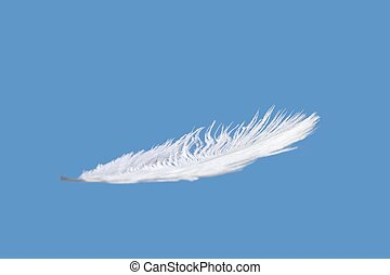 Feather with blue sky - One Feather isolated on a blue sky