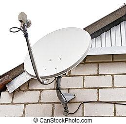 satélite, plato, antena, televisión