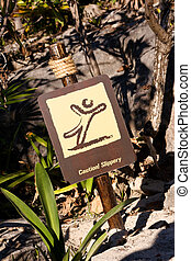 Caution Slippery Sign in Tropical Surroundings