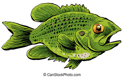 Rock Bass - A cartoon of a Rock Bass fish.