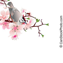 sprung bird on blossom cherry tree branch, japan style...