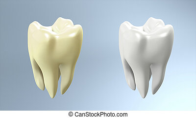 tooth compare - The tooth comparison for tooth care theme