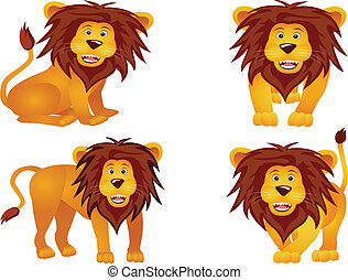 funny lion collection