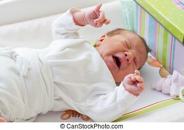 chorando, recem nascido, bebê, menina