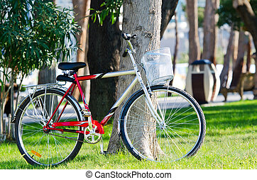 Bike bicycle in the park