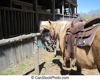 Horses tied to hitching posts - 2 horses tied to hitching...