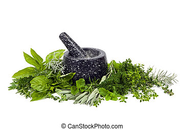 Mortar and Pestle with Fresh Herbs over White - Black mortar...