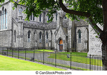Green grass and black grating near St Patricks Cathedral in...