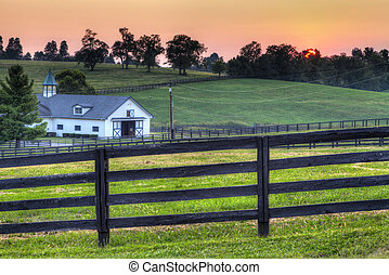 Horse Farm Sunset - Sunset behind the fields of a horse farm...