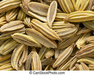 close up of fennel seeds food background