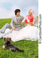 Beautiful young groom and bride wearing white dress sitting on green grass; bride keeps heart-shaped red balloon; small dog lies near couple