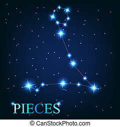 vector of the pieces zodiac sign of the beautiful bright...