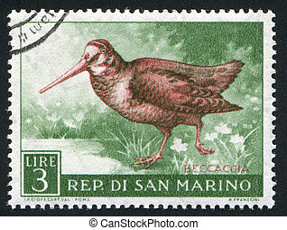 Woodcock - SAN MARINO - CIRCA 1960: stamp printed by San...