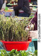 Organic  fresh wild asparagus