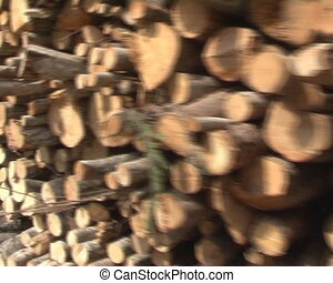 walking imitation logs - walking imitation near stack of...